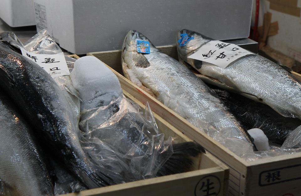 Tsukiji Fischmarkt |  Fischmarkt in der grossen Halle