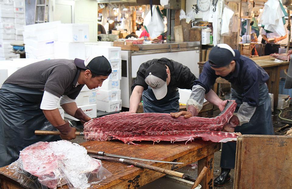 Tsukiji Fischmarkt |  Zersägen eines Thunfisches