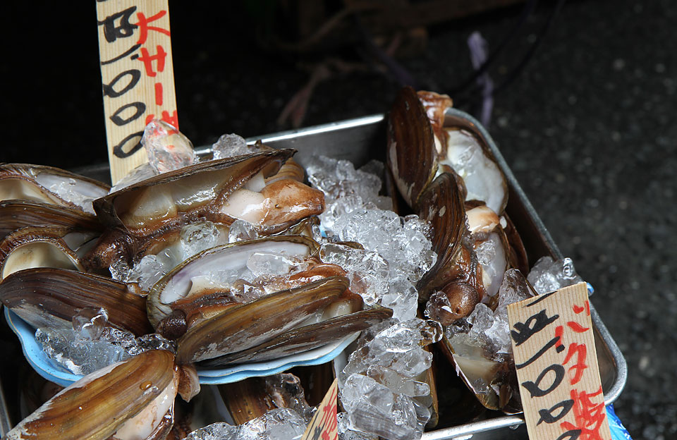 Tsukiji Fischmarkt | Die Ware wird möglichst lange frisch gehalten